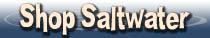 Saltwater Aquarium   Gifts